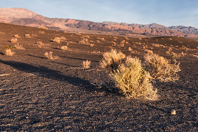 landscape in northern Death Valley, near Ubehebe Crater