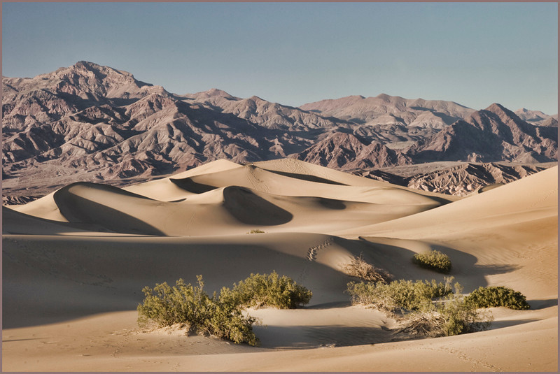 Gentle Curves<br /> <br /> Sand Dunes near Stovepipe Wells in Death Valley<br /> April 2009