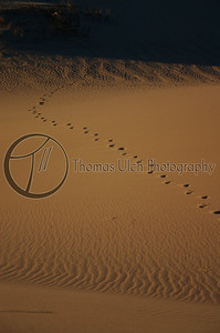 Yes. Those are the footprints of Jesus : ) Death Valley, California.