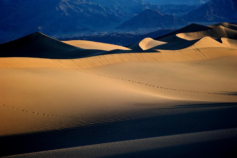 Sunrise at Mesquite dunes