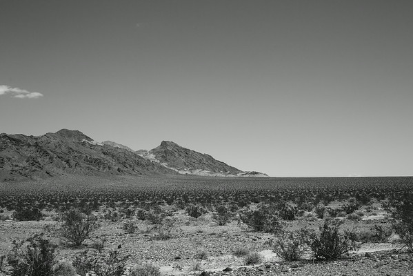 Death Valley//2014