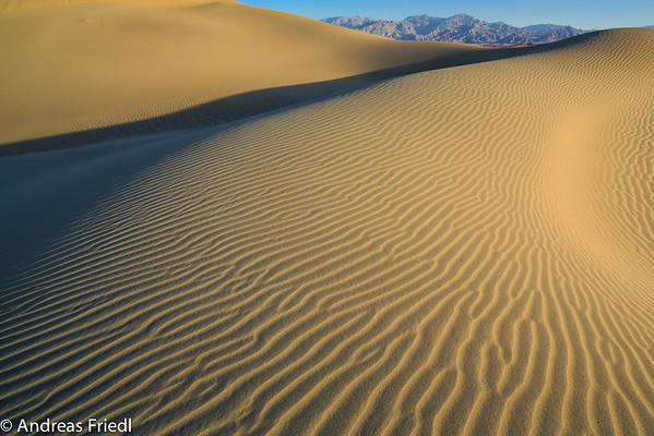 Death Valley Workshop