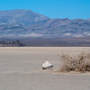 """<span id=""""title"""">Rock and Bush</span> <em>Racetrack Playa</em> Close to the edge of the playa, there was actually a plant growing. In the distance with the mirage, you can see the Grandstand, a large outcropping of rock that sits in the middle of the playa."""