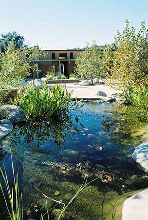 Debs Audubon Center: Trips