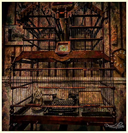 Caged Type