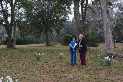 At Botany Bay Plantation