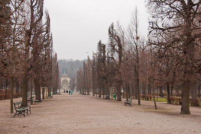 A cold, frosty and foggy day in the Schoenbrunn gardens.
