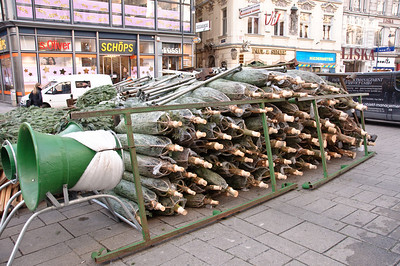 2008-12-09 Vienna-1507