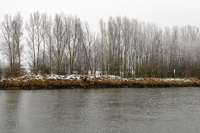 It's beginning to look like a winter wonderland as we cruise the Danube.