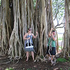 12/21 - Crazy tree growths at Ala Moana Park