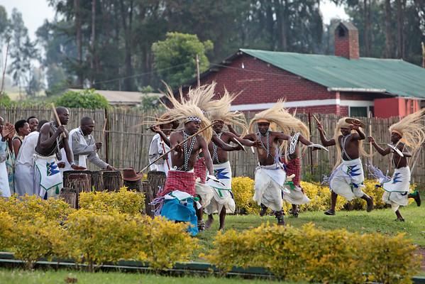 December 2012: Rwanda (Gorillas)