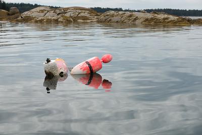 20150724.  Lobster buoy in Webb Cove , Deer Isle, ME.
