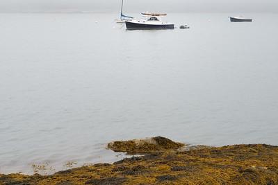 20150720.  Boats on Webb Cove, Deer Isle ME.