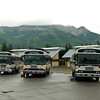 Camp Denali buses ready to roll.