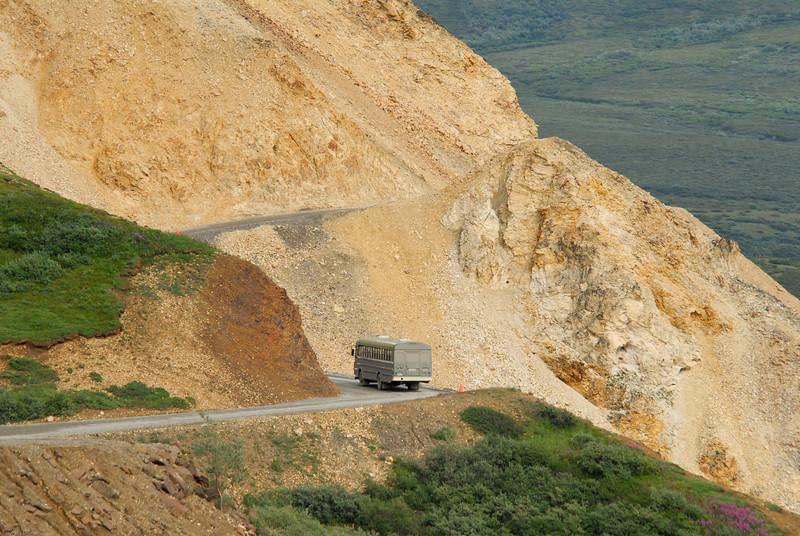 Road to Camp Denali.
