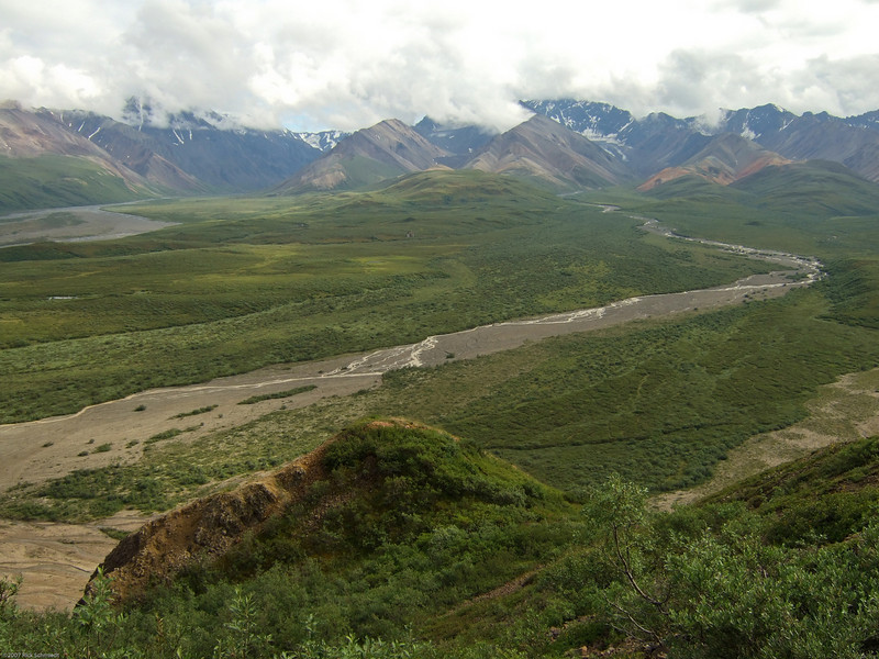 Glacial streams in Denali Park.