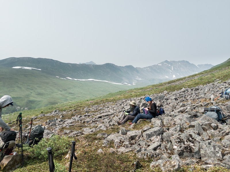 """Another """"packs off"""" break after crossing through some willow thickets and scree fields."""