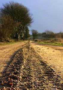 Road-to-Eternity