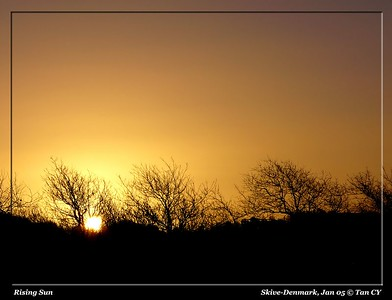 Rising Sun-363_filtered