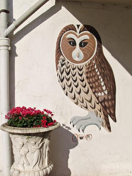Denmark owl painting flower pot red white wall