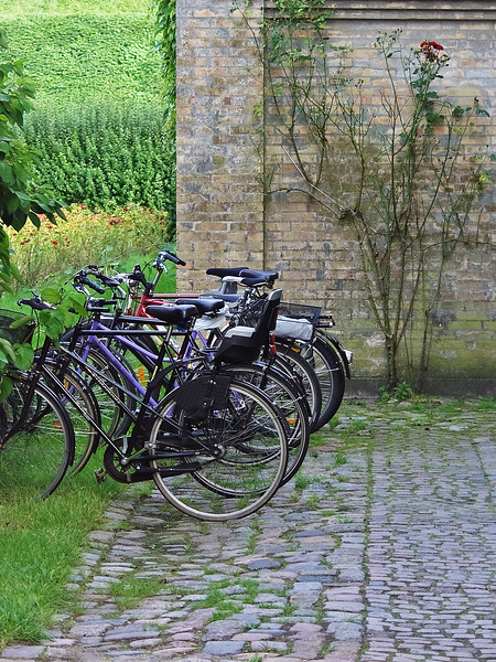 Denmark bicycles brick wall cobblestones
