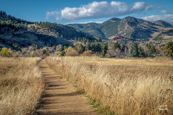 Shot in Chatauqua Park, Boulder, CO on November 1, 2018