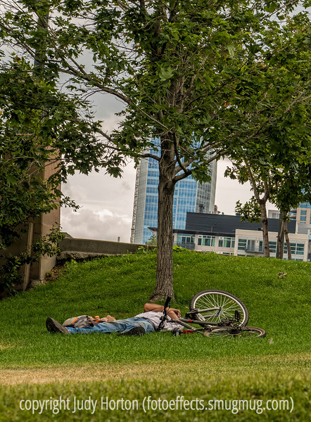 Napping in the Platte River/Confluence Park