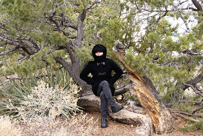 It's Cold in the Desert