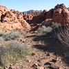 Valley of Fire scenery
