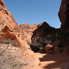 Trail at Valley of Fire SP.