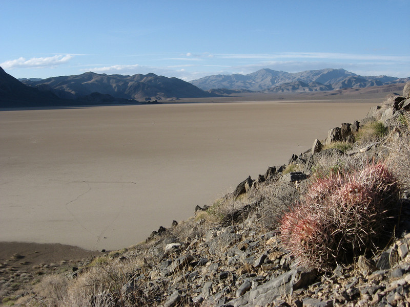 "A distant view, from a cactus-laden hill, of Death Valley's ""the Racetrack"""