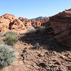 Scenic view of desert at Valley of Fire. Picture, especially non-optimized, unedited ones like this, simply don't do the place justice