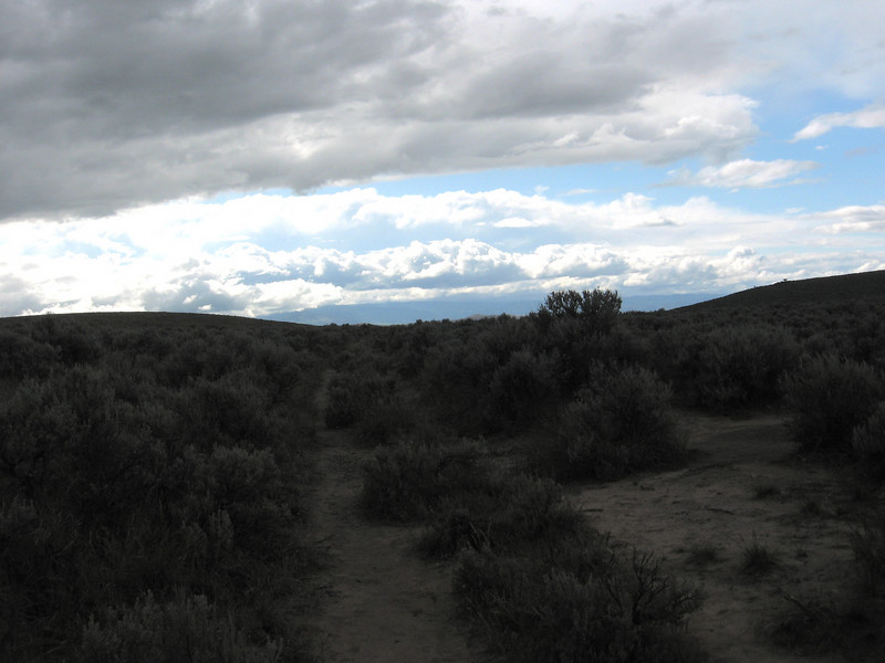 Near Baker City, the highway crosses the Oregon Trail; these are wagon ruts.