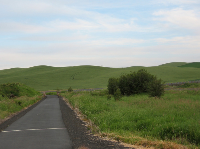 On Wednesday, June 17, I set out from Moscow, Idaho on my bike. I'd been attending the Evolution meeting at the University of Idaho. I started by riding on the bike path to Pullman, Washington.
