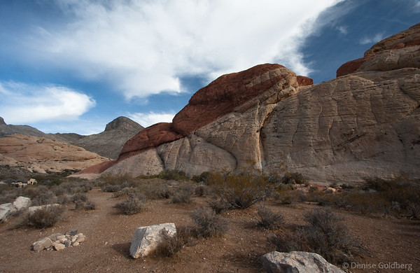 Afternoon & morning in Red Rock Canyon