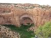 Betatakin cliff dwellings in Navajo National Monument.