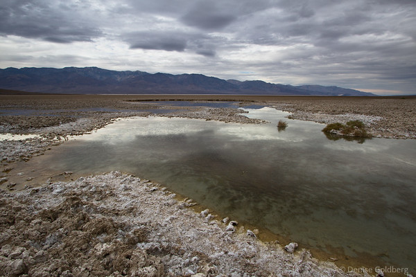 water, Death Valley National Park