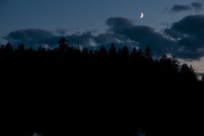Moonlight in Prideaux Haven