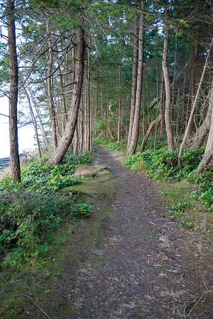 Shore path at Winter Cove