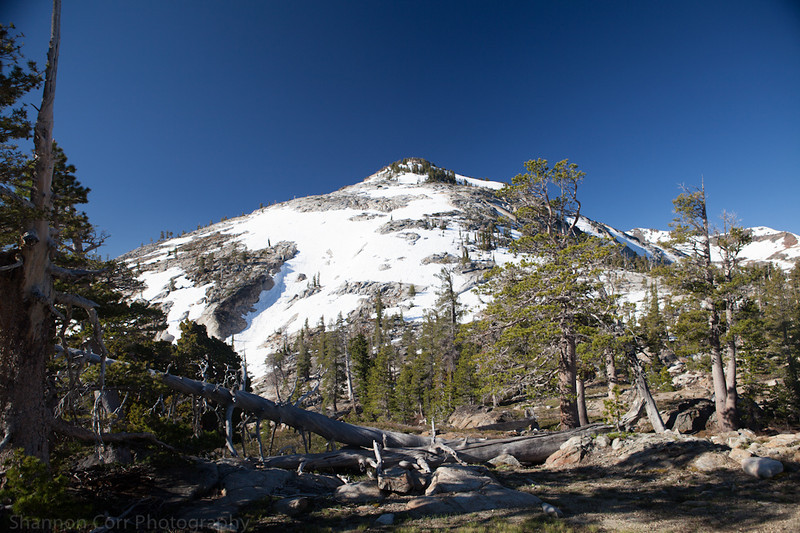 Ascent up to Velma Lakes in The Desolation Wilderness.