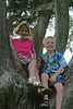 Destin Park M-D in oval tree 2