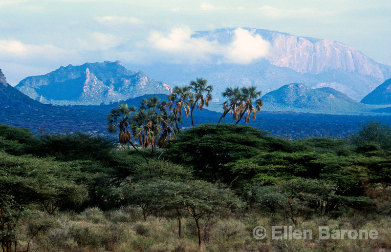 Scenic, Samburu National Reserve, Kenya, East Africa