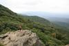 humpback hike_41