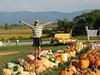 pumpkins_20070922_60