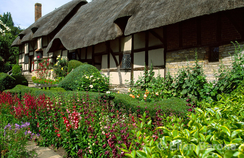 Anne Hathaway's Cottage at Shottery, this lovely half-timbered white-washed Tudor-style cottage was the home of Shakespeare's wife, Anne, Stratford-Upon-Avon, England