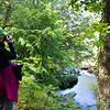 Photographing the thickly wooded banks of the River Dart, Devon, England, U.K.