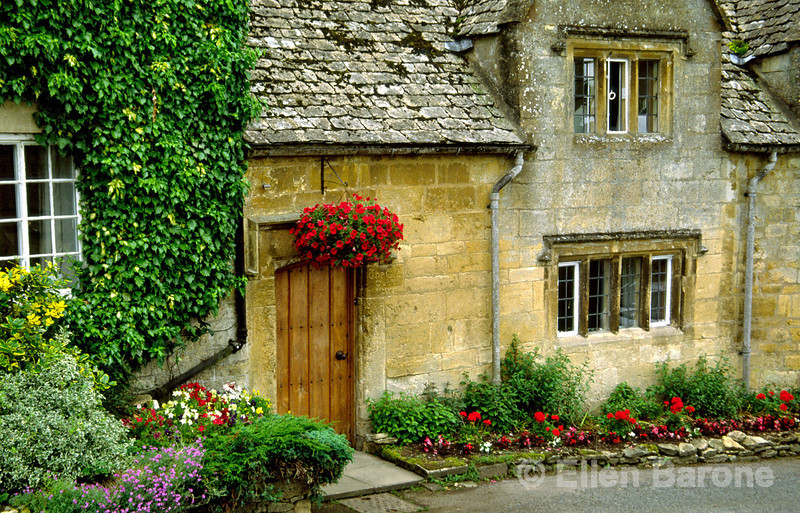 A picture postcard Cotswold cottage with ivy covered walls of honey colored Cotswold stone, and tidy flower garden, 'The Old Shop', Snowshill, England