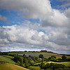 Farmland scenic, Dartmoor National Park, Devon, England, U.K.