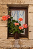 Geraniums in window, Dordogne River valley, France.