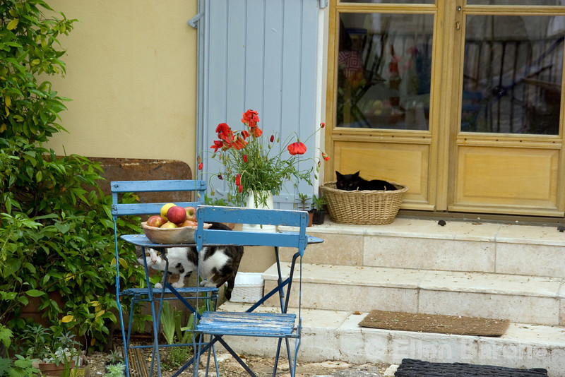 A lovely Provenca slice of life in Menerbes, the Luberon, Provence, France, Europe